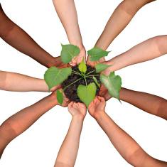 Team-Grow